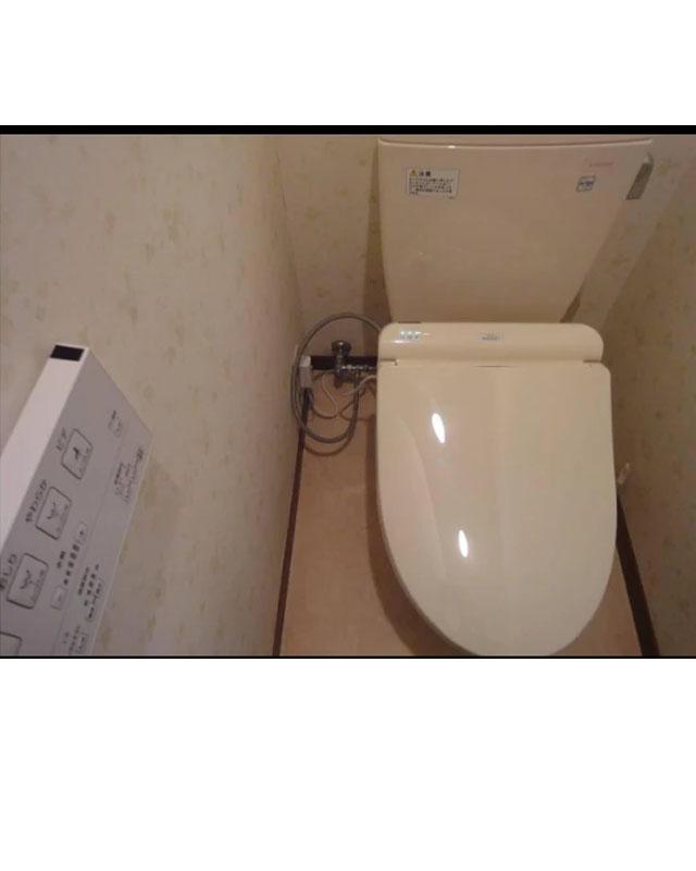 Hình ảnh thực tế nắp rửa điện tử TOTO TCF4911EZ